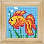 Золота рибка B-66