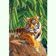 Хозяин джунглей РКП-083