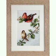 Птички B216