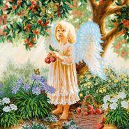 Райские яблоки AC-216