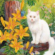 Белый кот AC-461